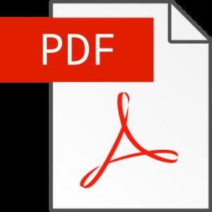 PDF Version herunterladen